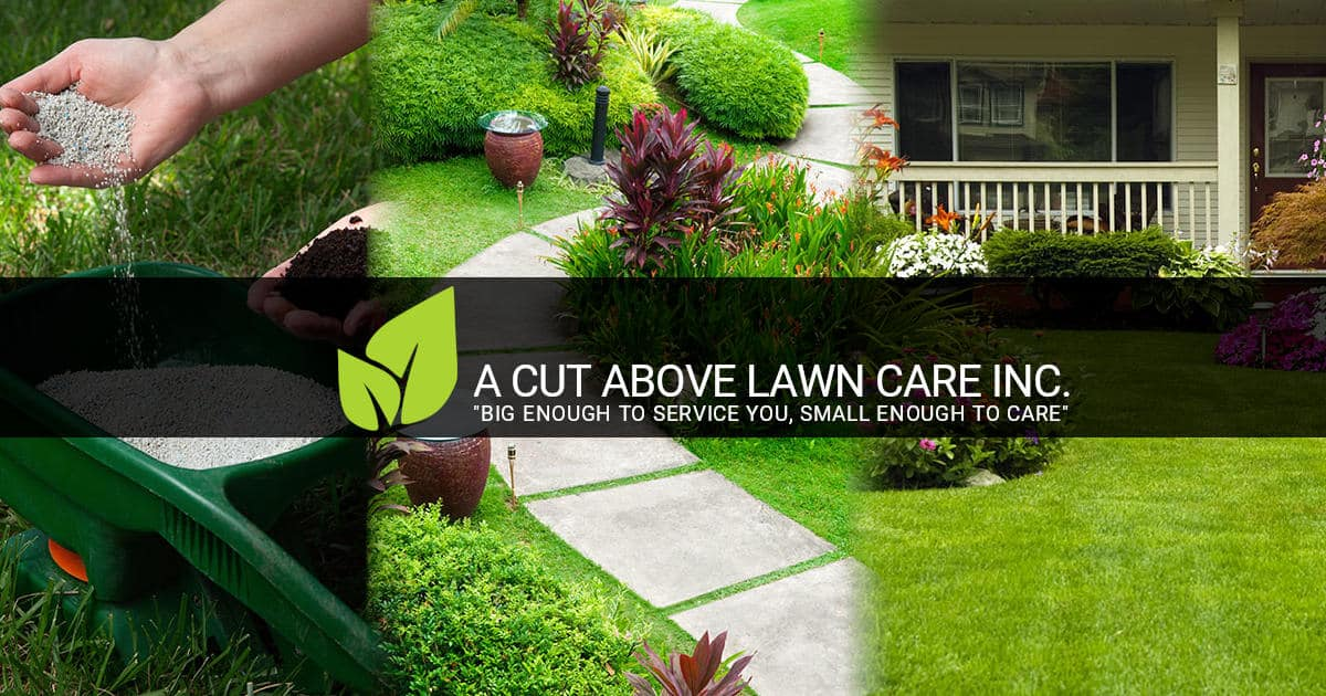 Contact Us A Cut Above Lawn Care Inc